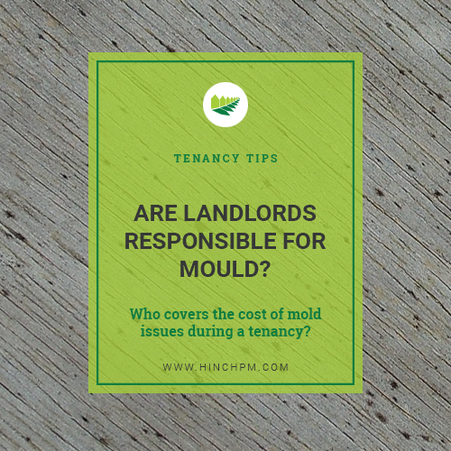 Are Landlords responsible for Mould?